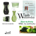 Scentsy Layers Laundry Care White Tea and Cactus