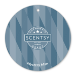 Scentsy Scent Circle Mystery Man