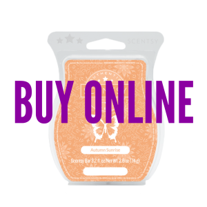 Buy Autumn Sunrise Scentsy® Bar Online