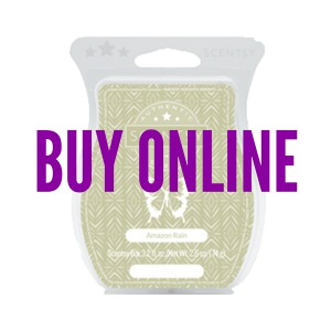 Buy Amazon Rain Scentsy® Bar Online