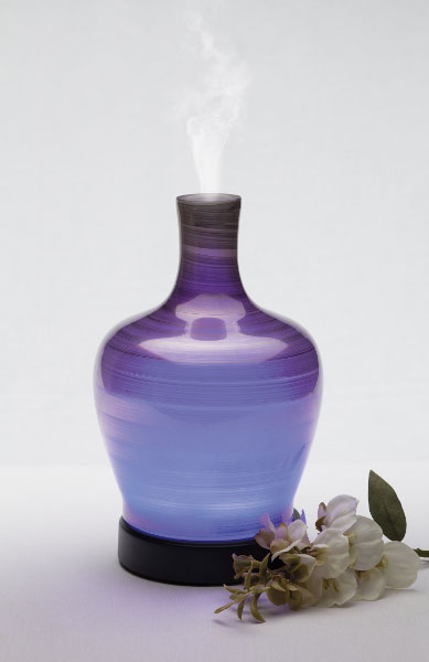 Evolve Essential Oil Scentsy® Diffuser