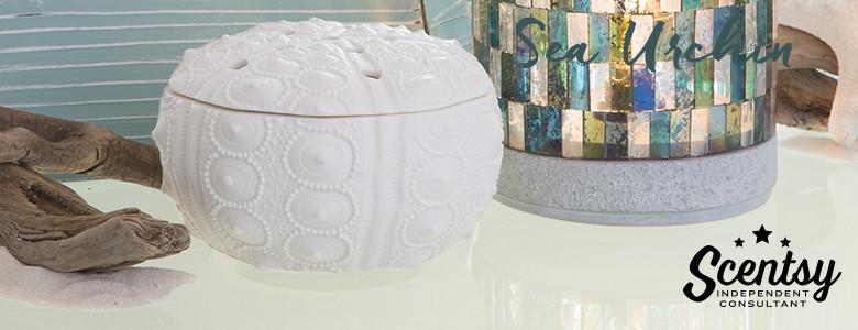Modern Sea Urchin Scentsy® Warmer Online