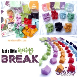 Spring Break with Wickless Candle Scentsy® Bars