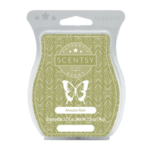 Amazon Rain Scentsy® Bar