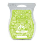 Apple Crush Scentsy® Bar