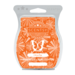 Citrus Pop Scentsy® Bar
