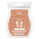 Coconut Pumpkin Pie Scentsy® Bar