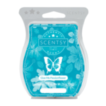Give Me Passionflower Scentsy® Bar