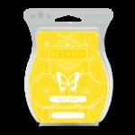 Lemon Sorbet Scentsy Bar