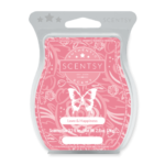 Love & Happiness Scentsy Bar
