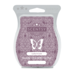 Lucky In Love Scentsy® Bar