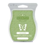 Lush Gardenia Scentsy® Bar