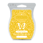 My Only Sunshine Scentsy® Bar