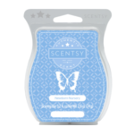 Newborn Nursery Scentsy® Bar