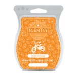 Oodles Of Orange Scentsy® Bar