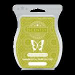 Persian Lime & Sandalwood Scentsy Bar