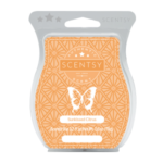 Sunkissed Citrus Scentsy® Bar