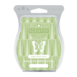 White Tea & Cactus Scentsy® Bar