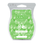 Wild What A Melon Scentsy® Bar