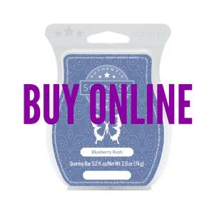 Buy Blueberry Rush Scentsy® Bar Online