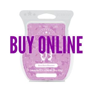Buy Bora Bora Blossom Scentsy® Bar Online