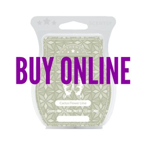 Buy Cactus Flower Lime Scentsy® Bar Online