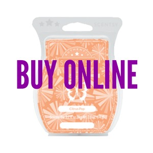 Buy Citrus Pop Scentsy® Bar Online