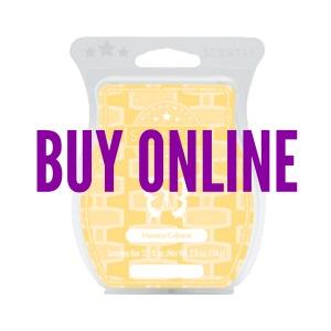 Buy Havana Cabana Scentsy® Bar Online