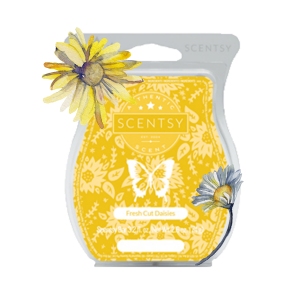 Fresh Cut Daisies Scentsy® Bar