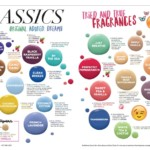 Scentsy® Bars Fall Winter 2016 Catalog Classics