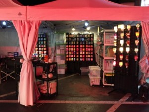I Am Wickless Scentsy Booth Circleville Pumpkin Show 2016