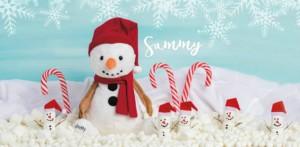 Snowman Scentsy Buddy