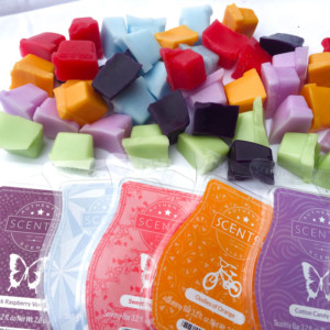 Learn the basics about Scentsy Bar products