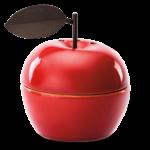 Appreciation Apple Scentsy Warmer