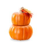 Pick of the Patch Pumpkin Warmer