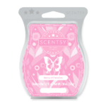 Berry of Paradise Scentsy Warmer