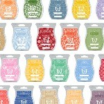 Scentsy Bar Products Online